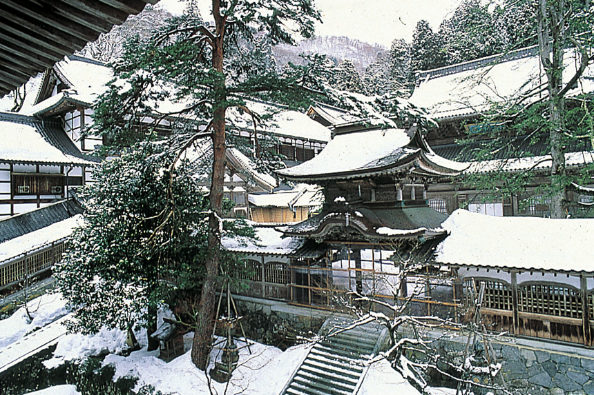 fukui buddhist singles Eiheiji is a temple in fukui prefecture a zen buddhist monastery, where visitors can experience the ascetic life of buddhist monks, eiheiji is also well-known for.